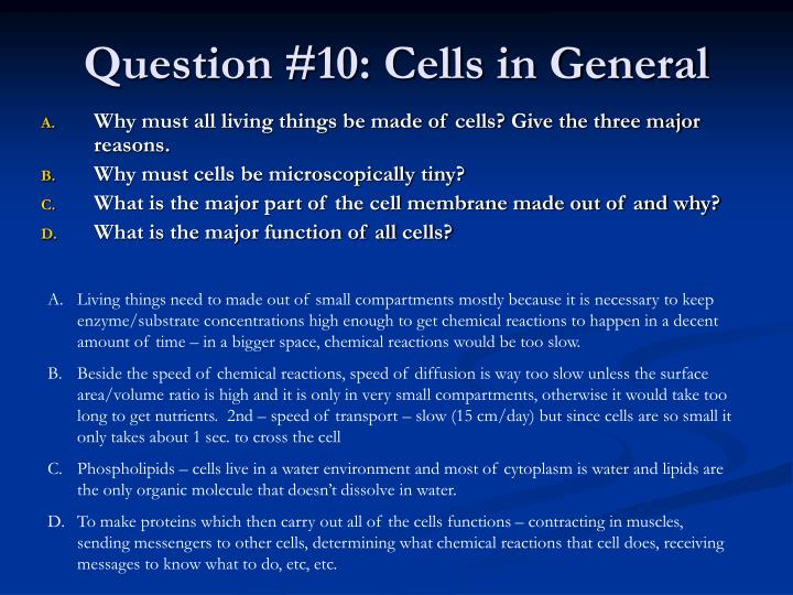 Question #10: Cells in General
