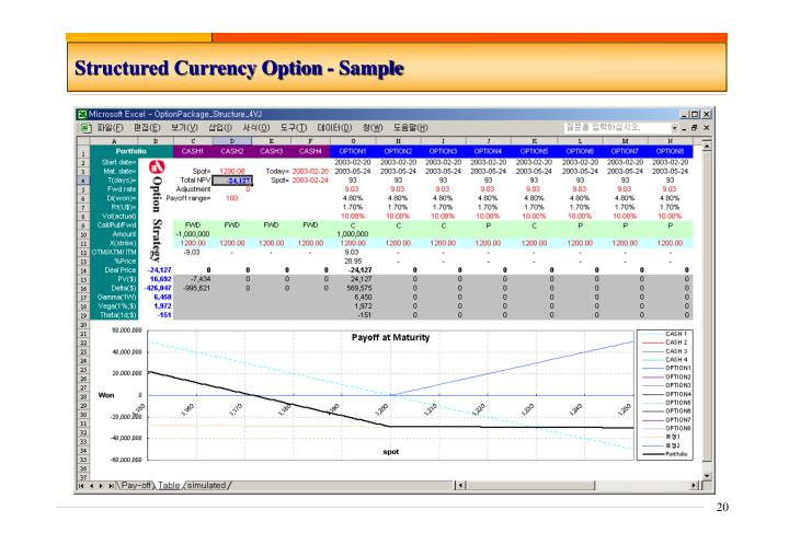Structured Currency Option - Sample