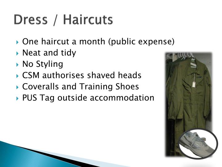 Dress / Haircuts