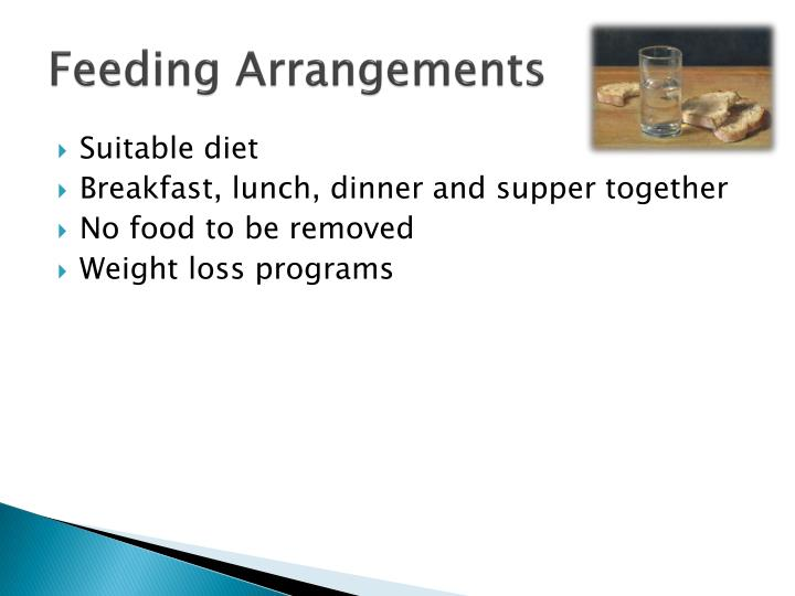 Feeding Arrangements