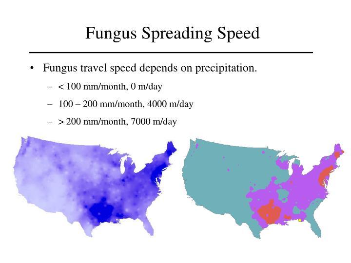 Fungus Spread