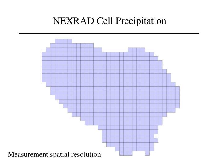 NEXRAD Cell Precipitation