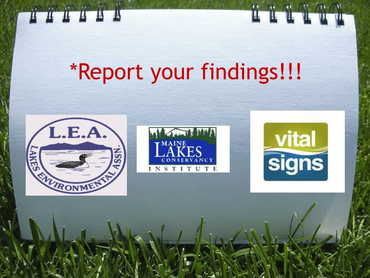 *Report your findings!!!