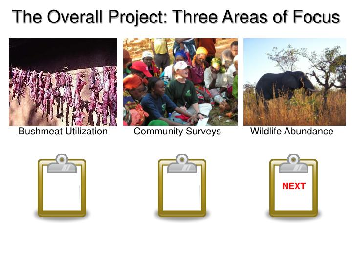 The Overall Project: Three Areas of Focus
