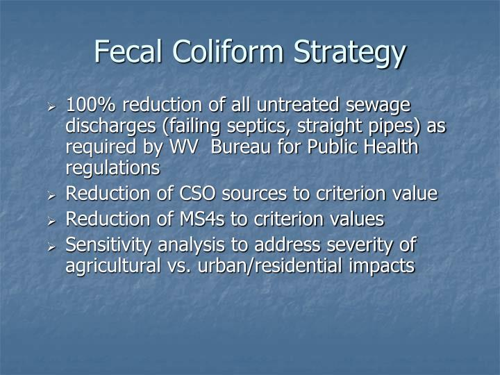 Fecal Coliform Strategy