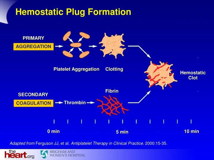 Hemostatic Plug Formation