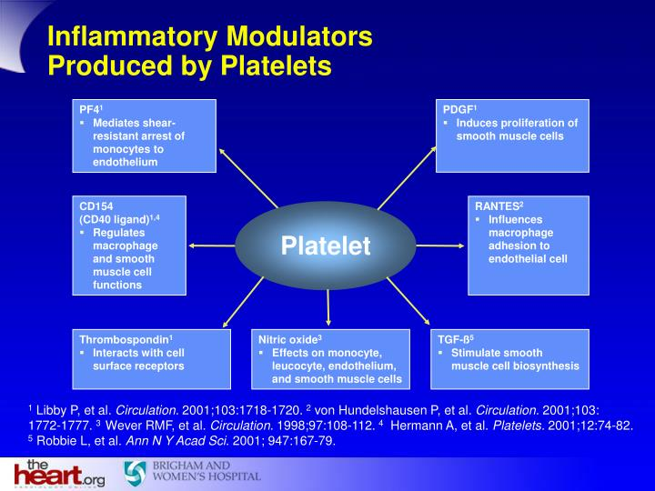 Inflammatory Modulators