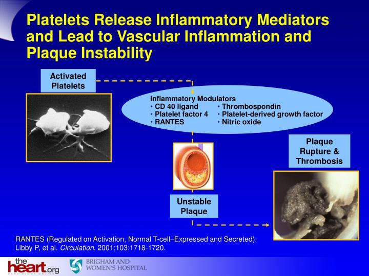 Platelets Release Inflammatory Mediators
