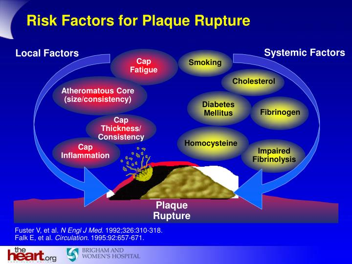 Risk Factors for Plaque Rupture