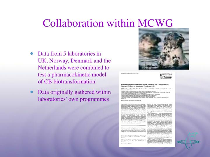 Collaboration within MCWG