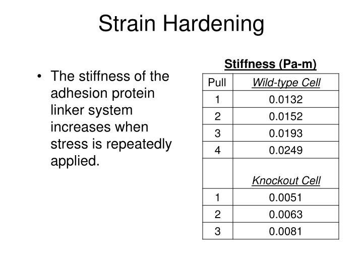 Strain Hardening