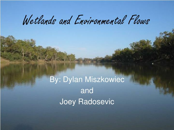 Wetlands and environmental flows