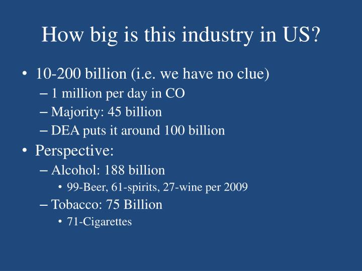 How big is this industry in US?