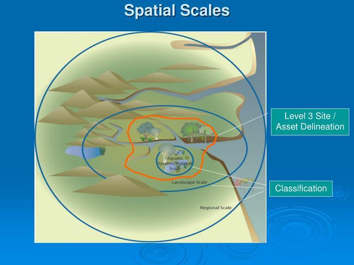 Spatial Scales