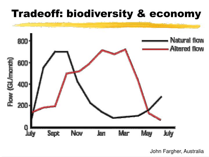 Tradeoff: biodiversity & economy