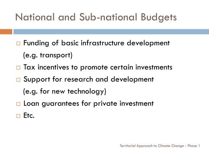 National and Sub-national Budgets