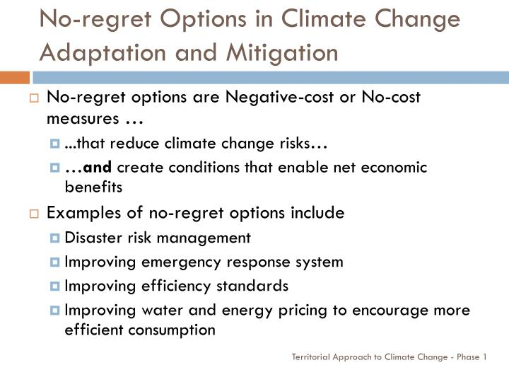 No-regret Options in Climate Change Adaptation and Mitigation
