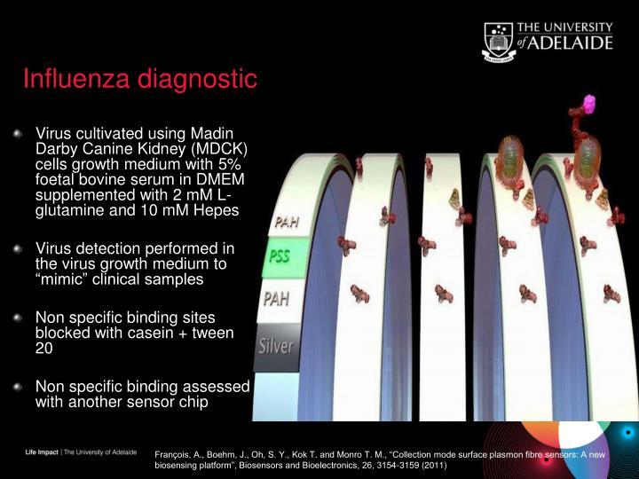 Influenza diagnostic
