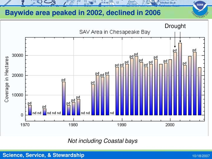 Baywide area peaked in 2002, declined in 2006