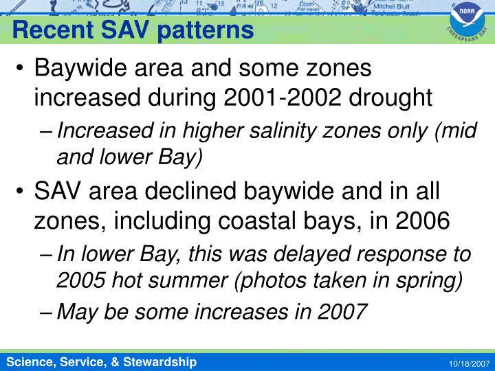 Recent SAV patterns