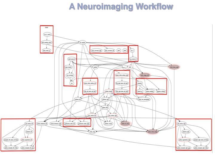 A Neuroimaging Workflow