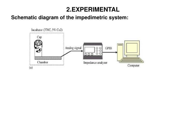 2.EXPERIMENTAL