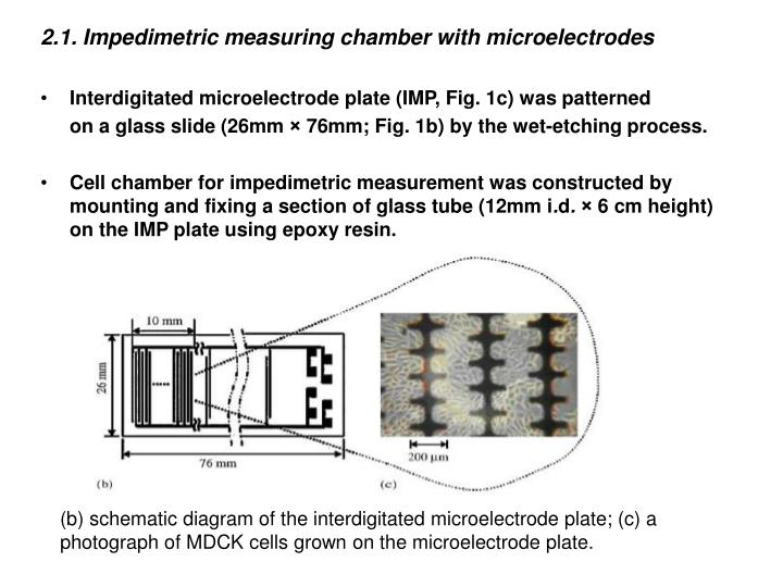 2.1. Impedimetric measuring chamber with microelectrodes