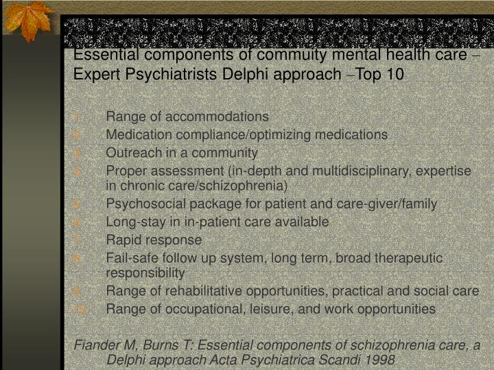 Essential components of commuity mental health care