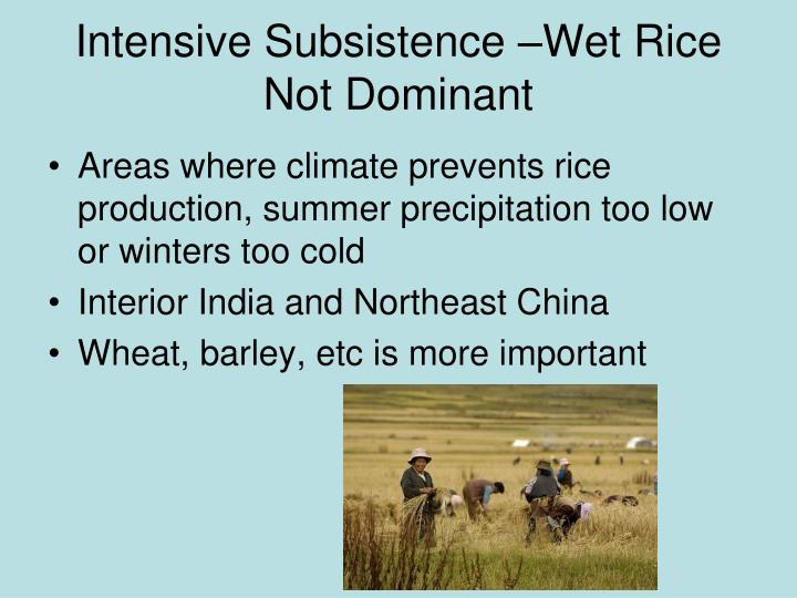 Intensive Subsistence –Wet Rice Not Dominant