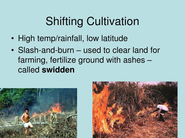 Shifting Cultivation
