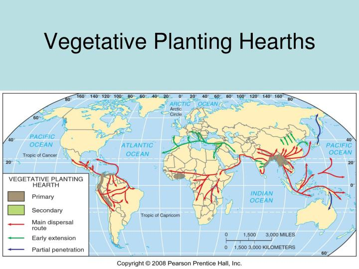 Vegetative Planting Hearths