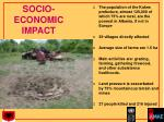 socio economic impact