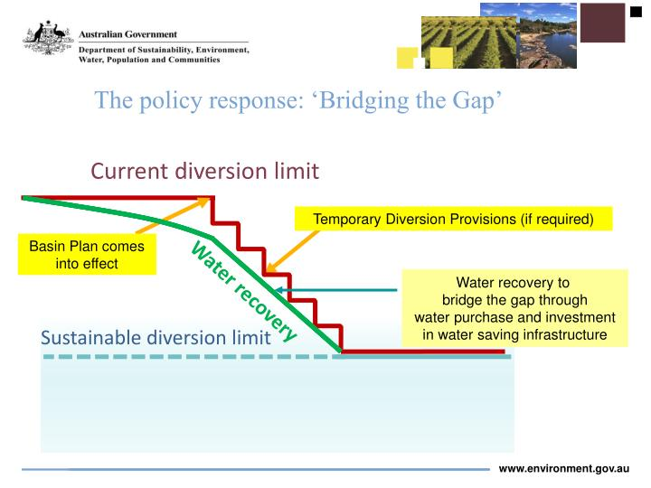 The policy response: 'Bridging the Gap'