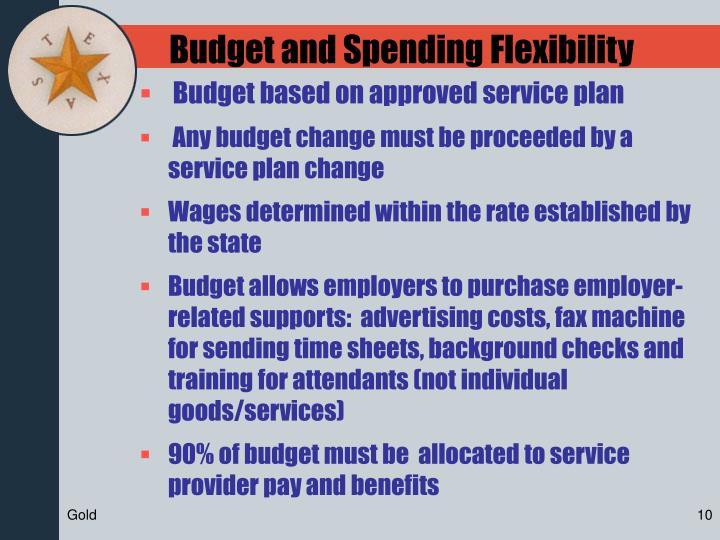 Budget and Spending Flexibility