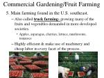 commercial gardening fruit farming