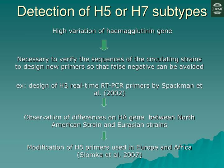Detection of H5 or H7 subtypes