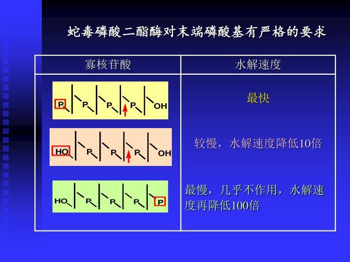 蛇毒磷酸二酯酶对末端磷酸基有严格的要求