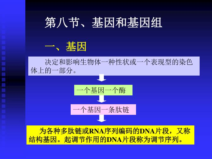 第八节、基因和基因组