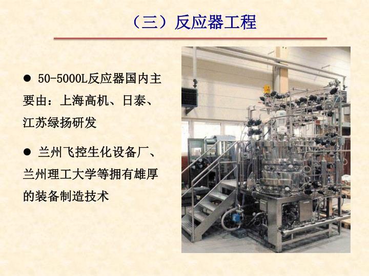 (三)反应器工程