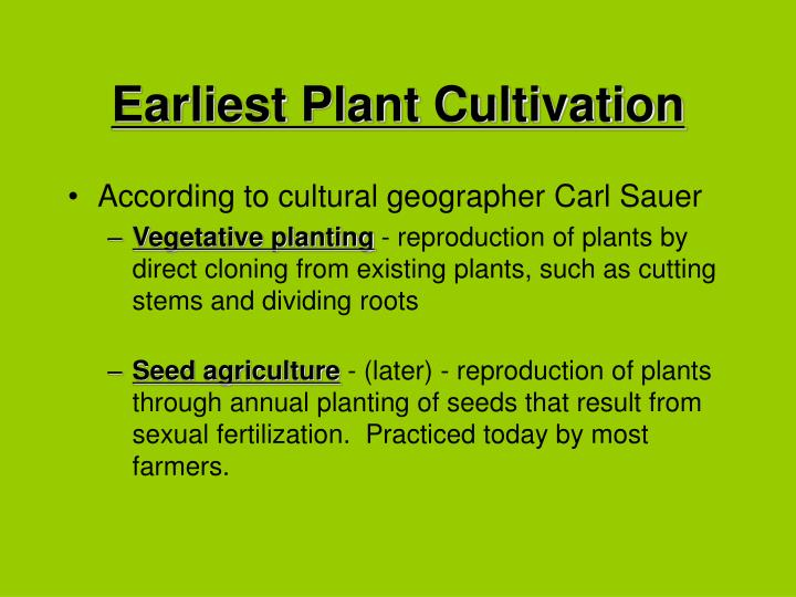 Earliest Plant Cultivation