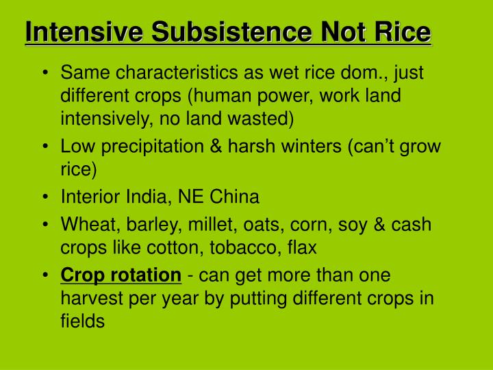 Intensive Subsistence Not Rice
