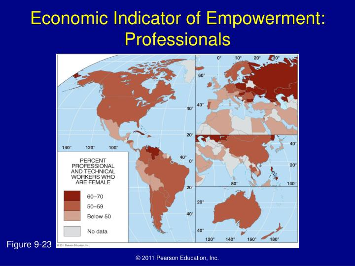 Economic Indicator of Empowerment: Professionals