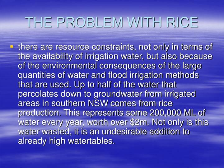 THE PROBLEM WITH RICE