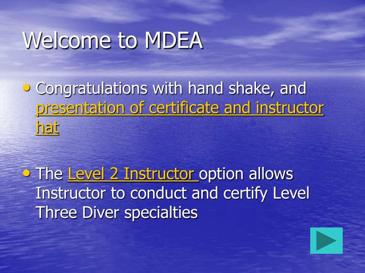 Welcome to MDEA