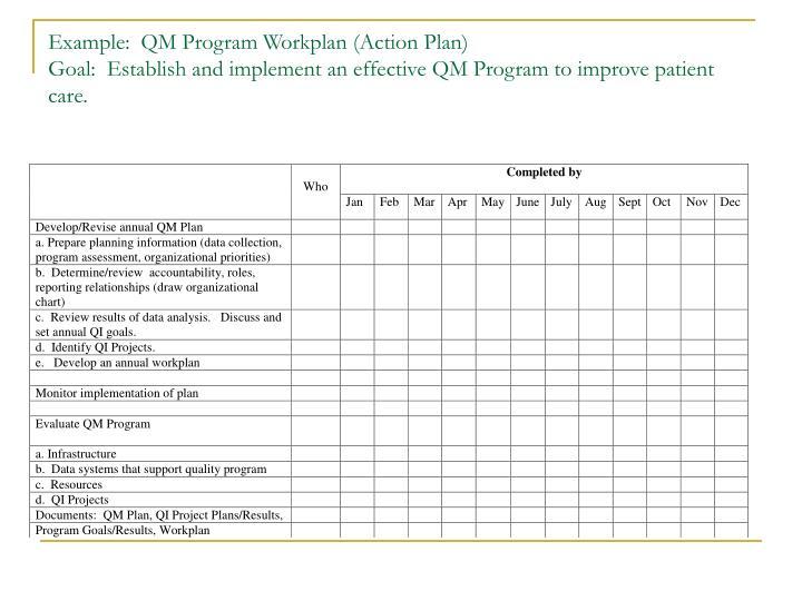 Example:  QM Program Workplan (Action Plan)