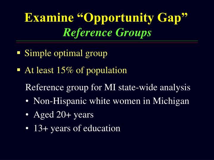 "Examine ""Opportunity Gap"""