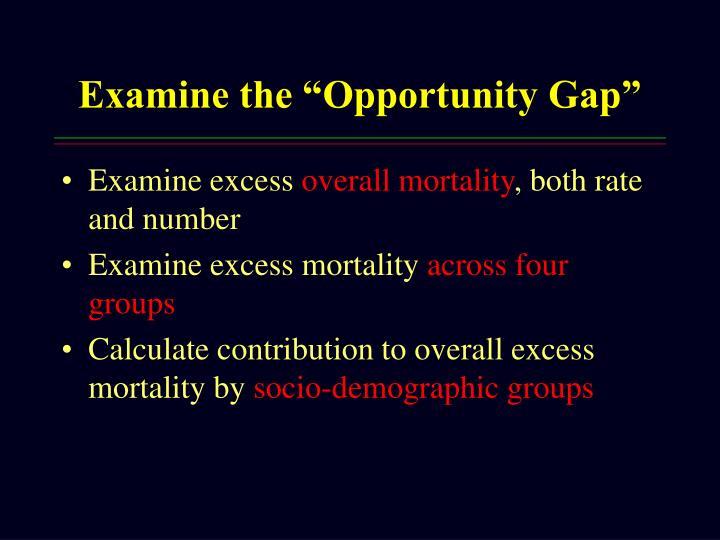 "Examine the ""Opportunity Gap"""