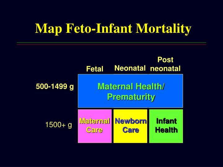 Map Feto-Infant Mortality