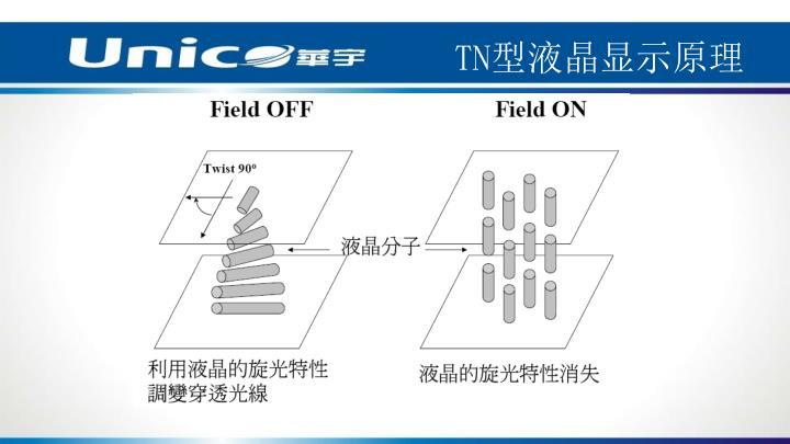 TN型液晶显示原理