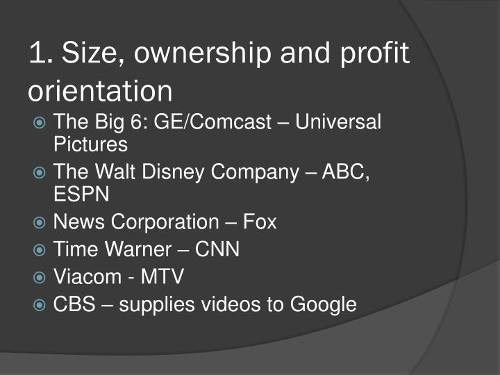 1. Size, ownership and profit orientation